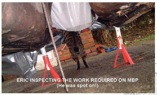 Eric Catona Inspecting